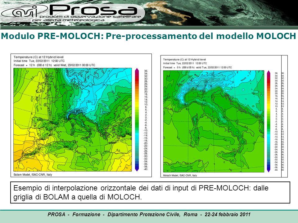 Modulo PRE-MOLOCH: Pre-processamento del modello MOLOCH OUTPUT PROSA - Formazione - Dipartimento Protezione Civile, Roma - 22-24 febbraio 2011 Esempio