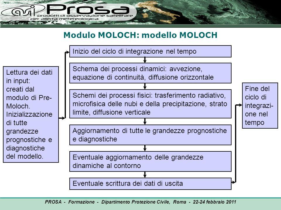 Modulo MOLOCH: modello MOLOCH OUTPUT Lettura dei dati in input: creati dal modulo di Pre- Moloch. Inizializzazione di tutte grandezze prognostiche e d