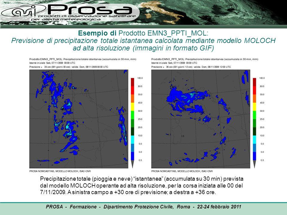 Esempio di Prodotto EMN3_PPTI_MOL: Previsione di precipitazione totale istantanea calcolata mediante modello MOLOCH ad alta risoluzione (immagini in f