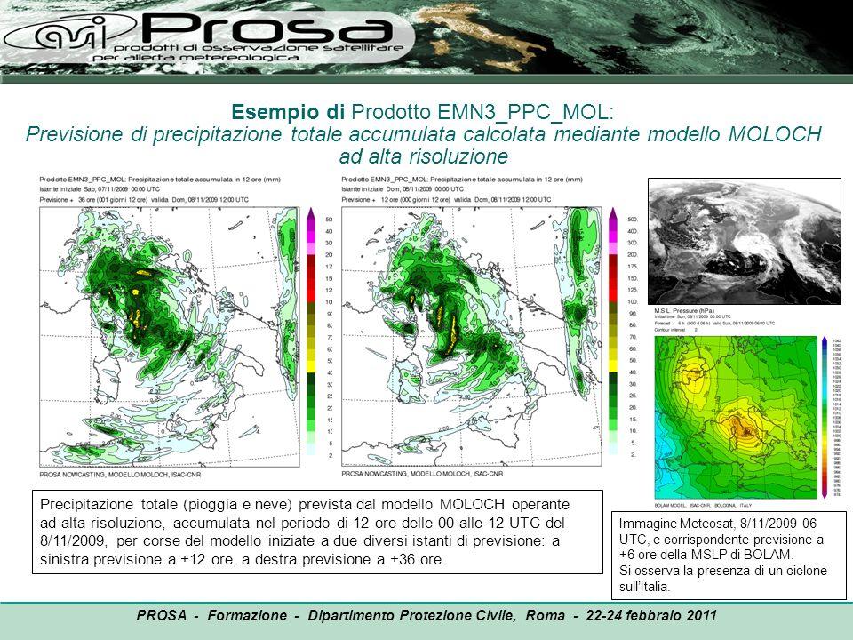 Esempio di Prodotto EMN3_PPC_MOL: Previsione di precipitazione totale accumulata calcolata mediante modello MOLOCH ad alta risoluzione Precipitazione