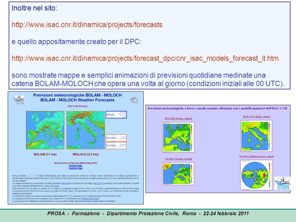 OUTPUT PROSA - Formazione - Dipartimento Protezione Civile, Roma - 22-24 febbraio 2011 Inoltre nel sito: http://www.isac.cnr.it/dinamica/projects/fore