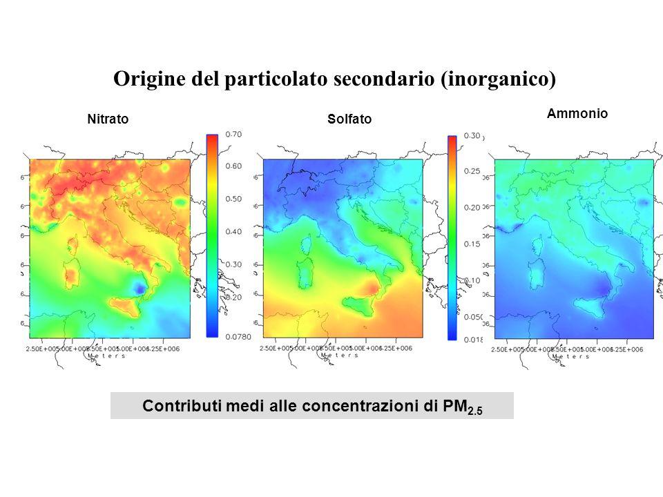 Contributi medi alle concentrazioni di PM 2.5 Origine del particolato secondario (inorganico) SolfatoNitrato Ammonio