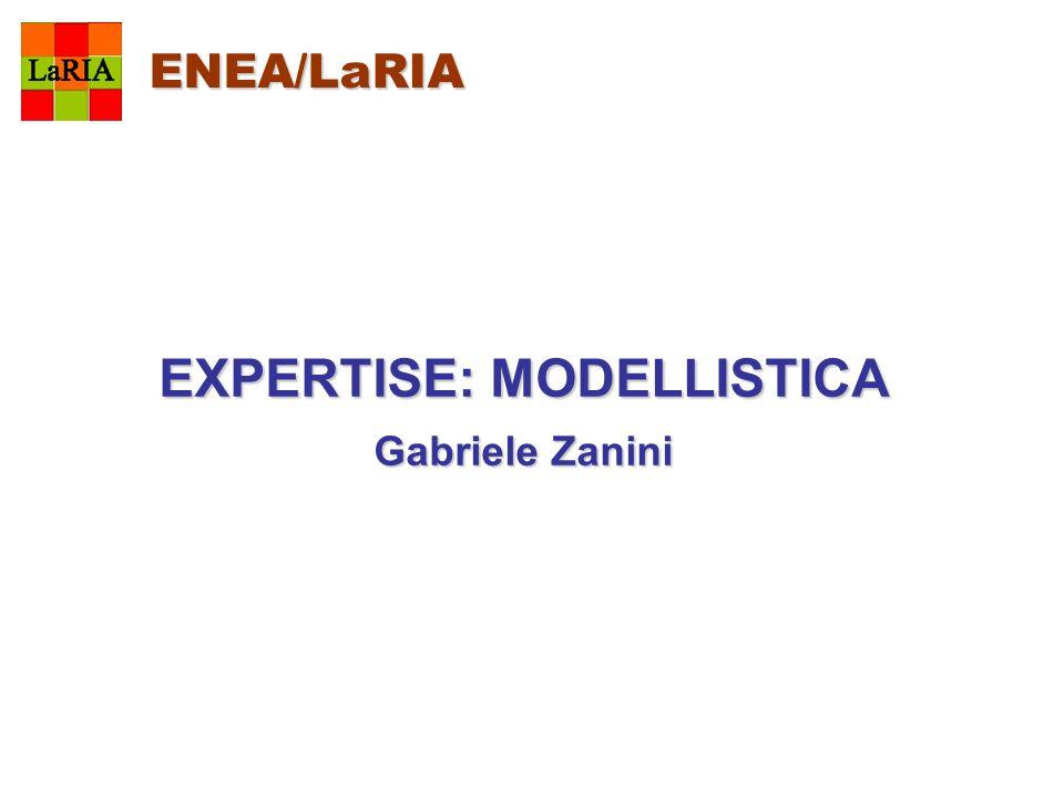 ENEA/LaRIA EXPERTISE: MODELLISTICA Gabriele Zanini