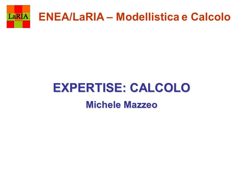 ENEA/LaRIA – Modellistica e Calcolo EXPERTISE: CALCOLO Michele Mazzeo