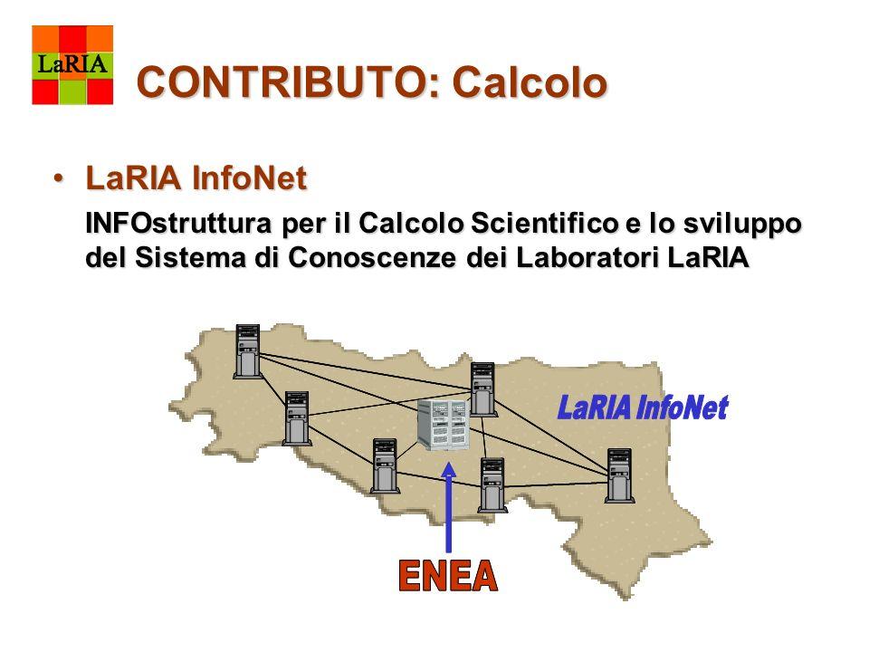 CONTRIBUTO: Calcolo LaRIA InfoNetLaRIA InfoNet INFOstruttura per il Calcolo Scientifico e lo sviluppo del Sistema di Conoscenze dei Laboratori LaRIA