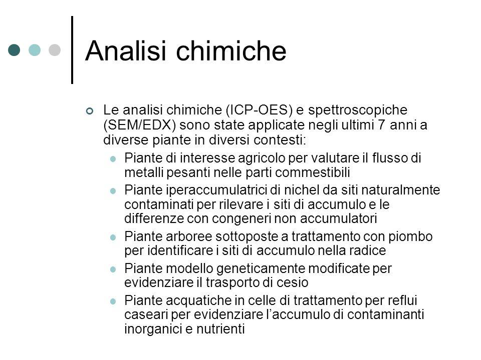 Analisi chimiche Le analisi chimiche (ICP-OES) e spettroscopiche (SEM/EDX) sono state applicate negli ultimi 7 anni a diverse piante in diversi contesti: Piante di interesse agricolo per valutare il flusso di metalli pesanti nelle parti commestibili Piante iperaccumulatrici di nichel da siti naturalmente contaminati per rilevare i siti di accumulo e le differenze con congeneri non accumulatori Piante arboree sottoposte a trattamento con piombo per identificare i siti di accumulo nella radice Piante modello geneticamente modificate per evidenziare il trasporto di cesio Piante acquatiche in celle di trattamento per reflui caseari per evidenziare laccumulo di contaminanti inorganici e nutrienti