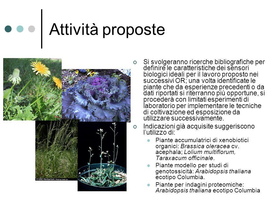 Biomonitoraggio Il gruppo ha già svolto in passato esperienze di biomonitoraggio con piante superiori.