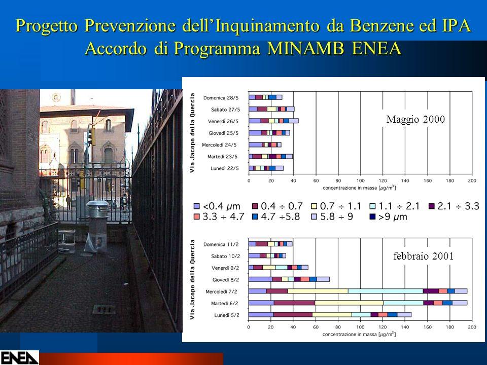 Progetto Prevenzione dellInquinamento da Benzene ed IPA Accordo di Programma MINAMB ENEA Maggio 2000 febbraio 2001