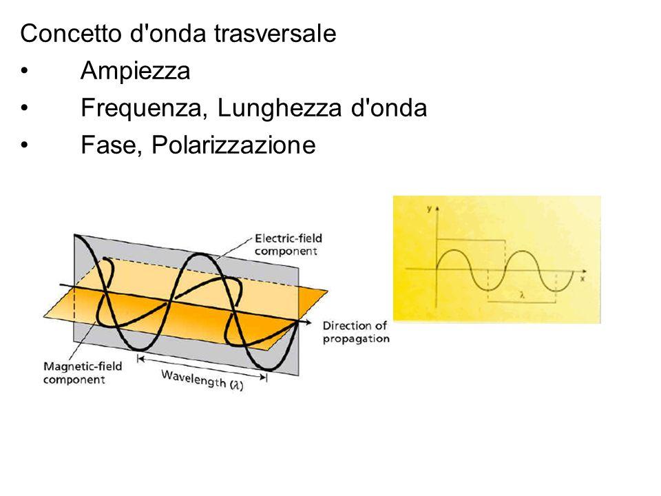 Concetto d onda trasversale Ampiezza Frequenza, Lunghezza d onda Fase, Polarizzazione
