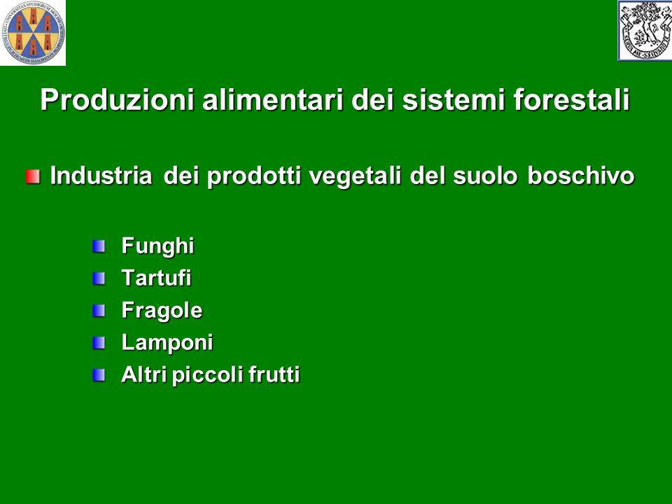 Produzioni alimentari dei sistemi forestali Industria dei prodotti vegetali del suolo boschivo Funghi Funghi Tartufi Tartufi Fragole Fragole Lamponi L