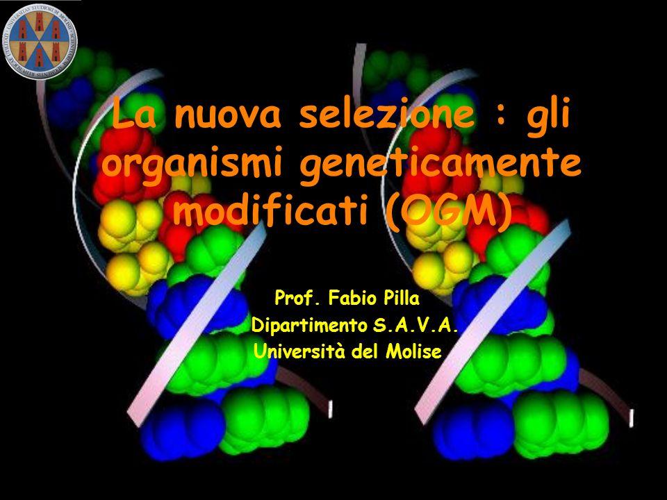 La nuova selezione : gli organismi geneticamente modificati (OGM) Prof. Fabio Pilla Dipartimento S.A.V.A. Università del Molise