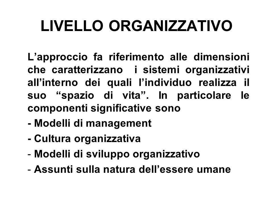 LIVELLO ORGANIZZATIVO Lapproccio fa riferimento alle dimensioni che caratterizzano i sistemi organizzativi allinterno dei quali lindividuo realizza il
