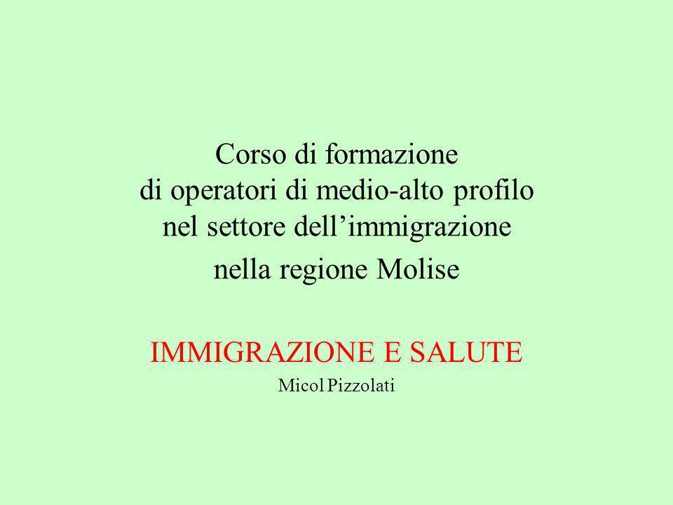Corso di formazione di operatori di medio-alto profilo nel settore dellimmigrazione nella regione Molise IMMIGRAZIONE E SALUTE Micol Pizzolati
