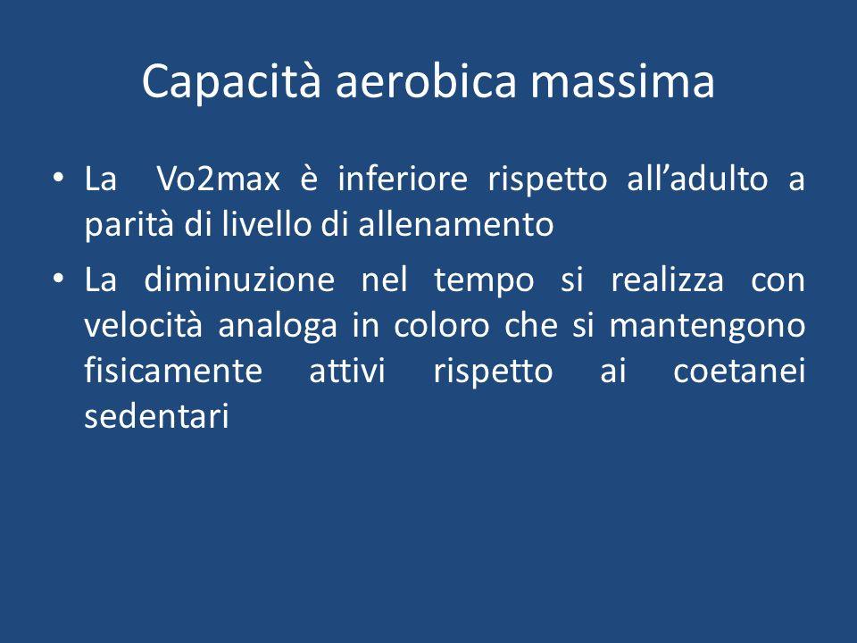 Capacità aerobica massima La Vo2max è inferiore rispetto alladulto a parità di livello di allenamento La diminuzione nel tempo si realizza con velocità analoga in coloro che si mantengono fisicamente attivi rispetto ai coetanei sedentari
