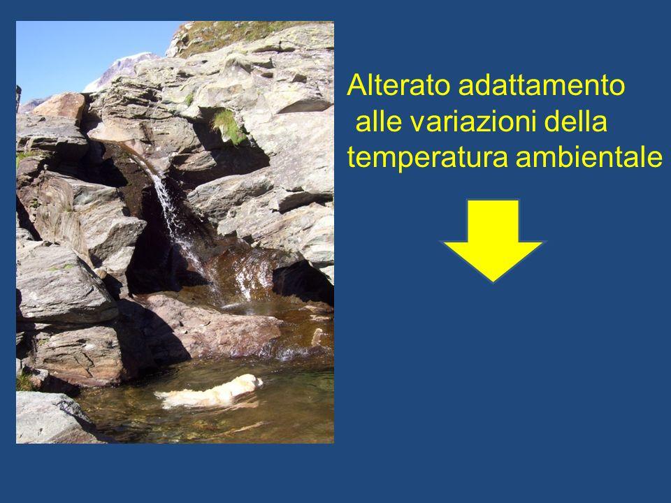 Alterato adattamento alle variazioni della temperatura ambientale