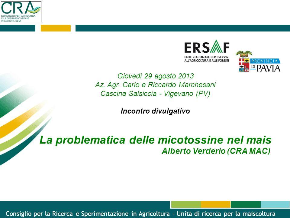 Giovedì 29 agosto 2013 Az. Agr. Carlo e Riccardo Marchesani Cascina Salsiccia - Vigevano (PV) Incontro divulgativo La problematica delle micotossine n