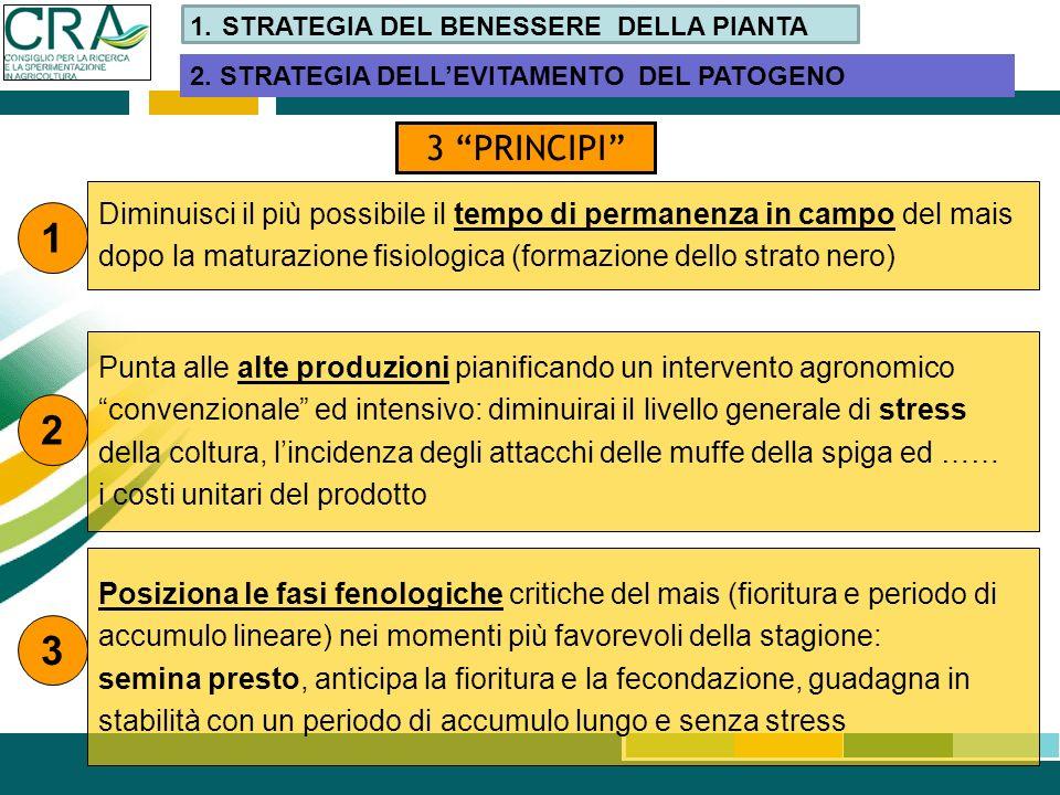 Diminuisci il più possibile il tempo di permanenza in campo del mais dopo la maturazione fisiologica (formazione dello strato nero) 3 PRINCIPI 1 2 Pun