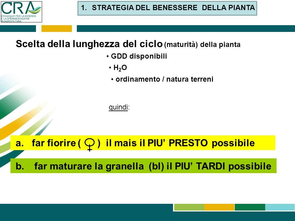 Scelta della lunghezza del ciclo (maturità) della pianta GDD disponibili H 2 O ordinamento / natura terreni quindi: b. far maturare la granella (bl) i