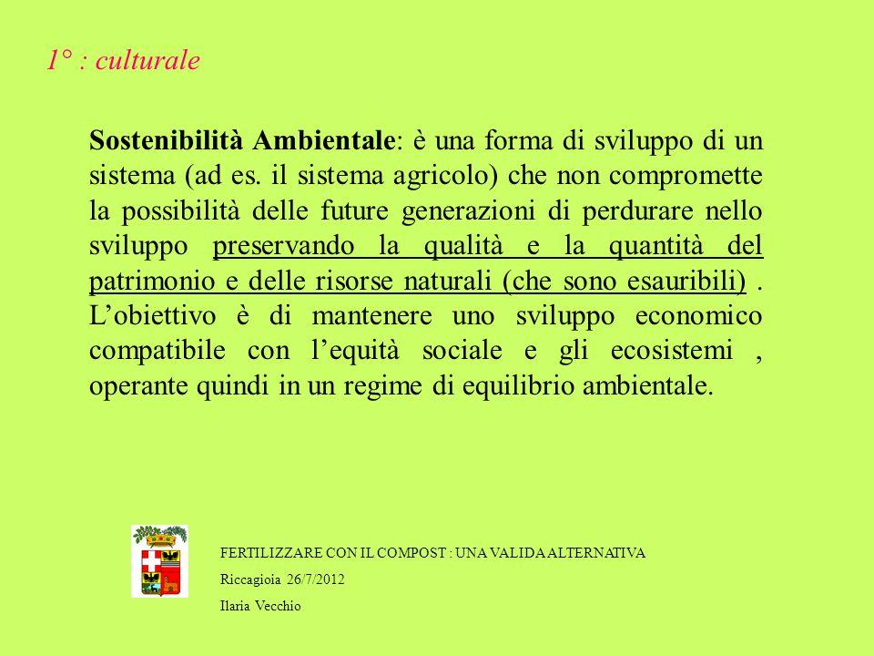 FERTILIZZARE CON IL COMPOST : UNA VALIDA ALTERNATIVA Riccagioia 26/7/2012 Ilaria Vecchio Sostenibilità Ambientale: è una forma di sviluppo di un sistema (ad es.