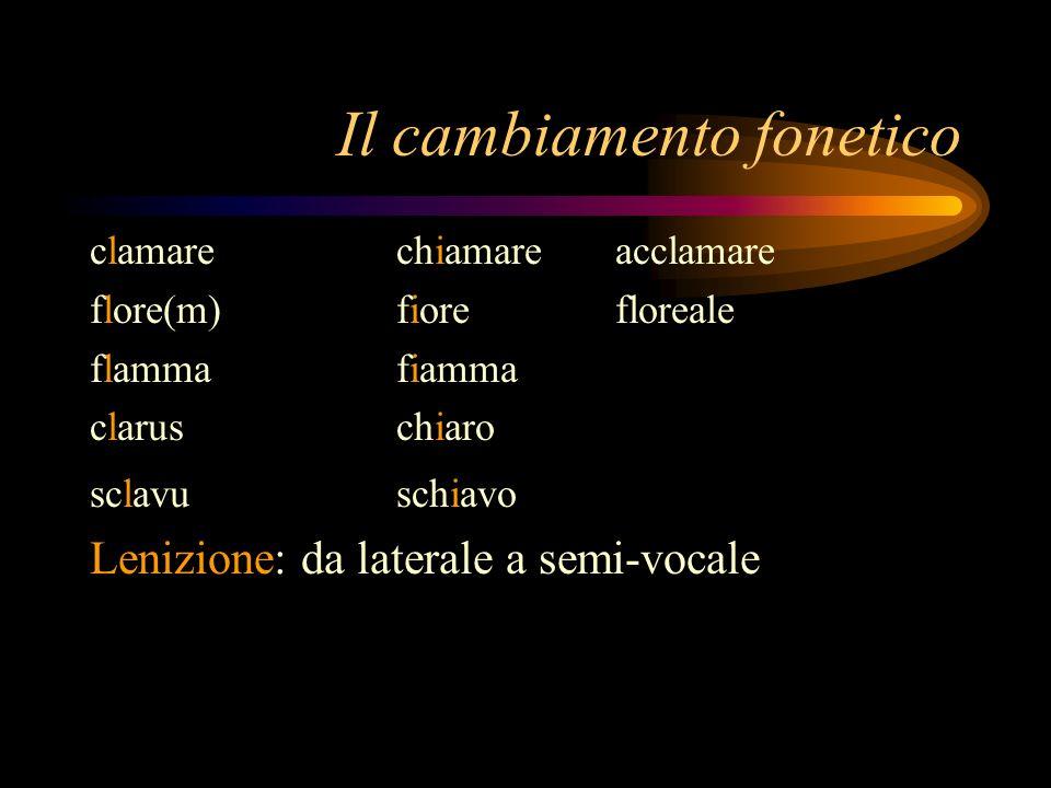 Il cambiamento fonetico clamare chiamare acclamare flore(m) fiore floreale flammafiamma claruschiaro sclavuschiavo Lenizione: da laterale a semi-vocal