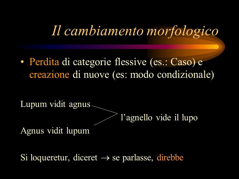 Il cambiamento morfologico Perdita di categorie flessive (es.: Caso) e creazione di nuove (es: modo condizionale) Lupum vidit agnus lagnello vide il l