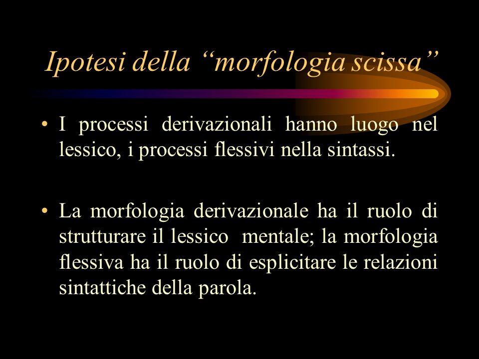 Ipotesi della morfologia scissa I processi derivazionali hanno luogo nel lessico, i processi flessivi nella sintassi. La morfologia derivazionale ha i