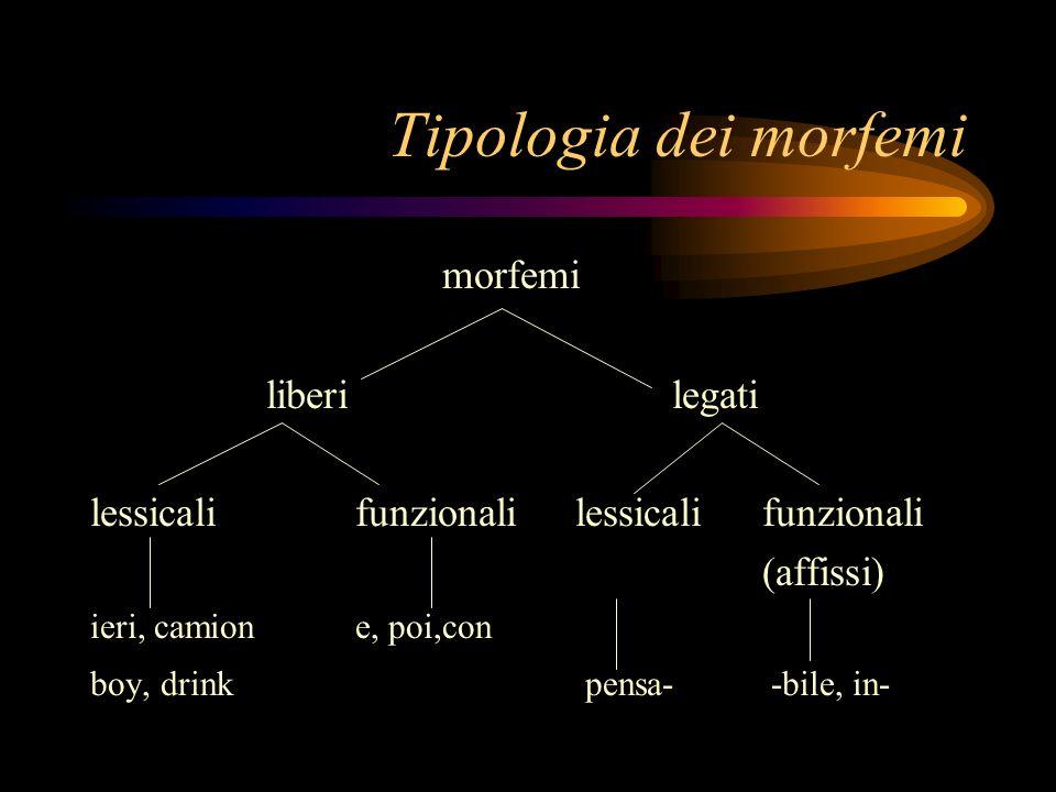 Tipologia dei morfemi morfemi liberilegati lessicalifunzionali (affissi) ieri, camione, poi,con boy, drink pensa- -bile, in-
