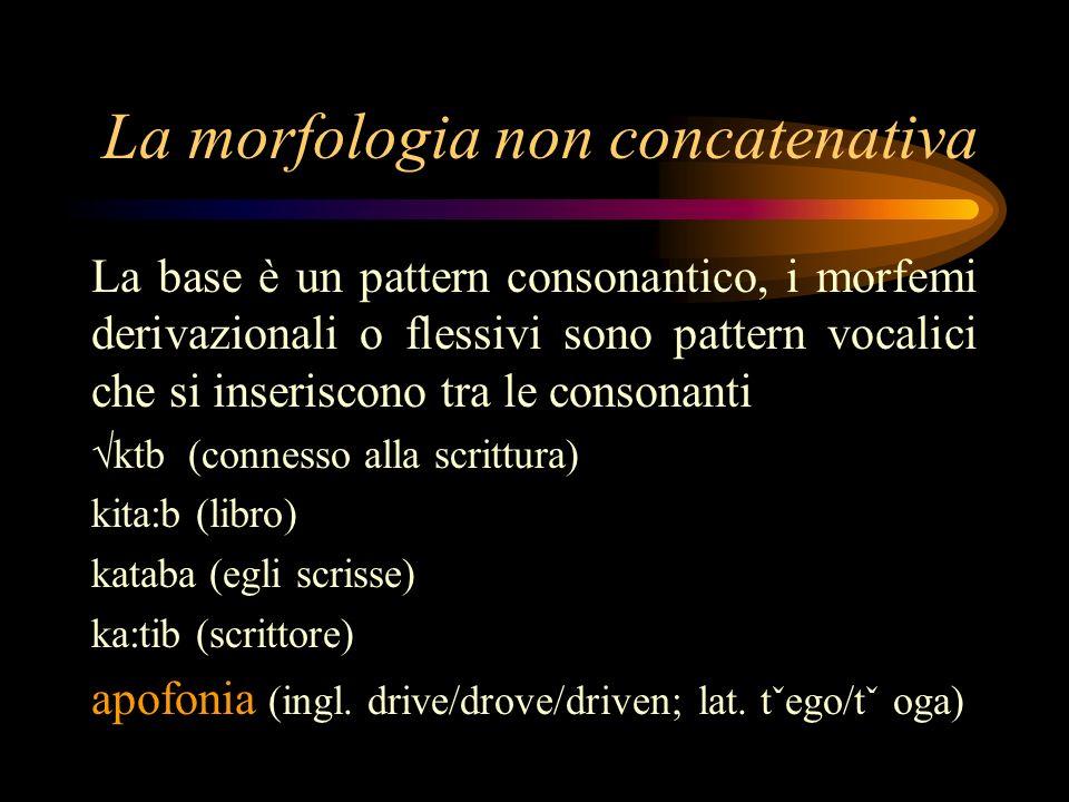 La morfologia non concatenativa La base è un pattern consonantico, i morfemi derivazionali o flessivi sono pattern vocalici che si inseriscono tra le