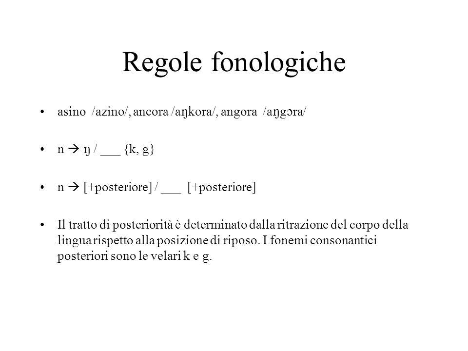 Regole fonologiche asino /azino/, ancora /a kora/, angora /a g ra/ n / ___ {k, g} n [+posteriore] / ___ [+posteriore] Il tratto di posteriorità è determinato dalla ritrazione del corpo della lingua rispetto alla posizione di riposo.