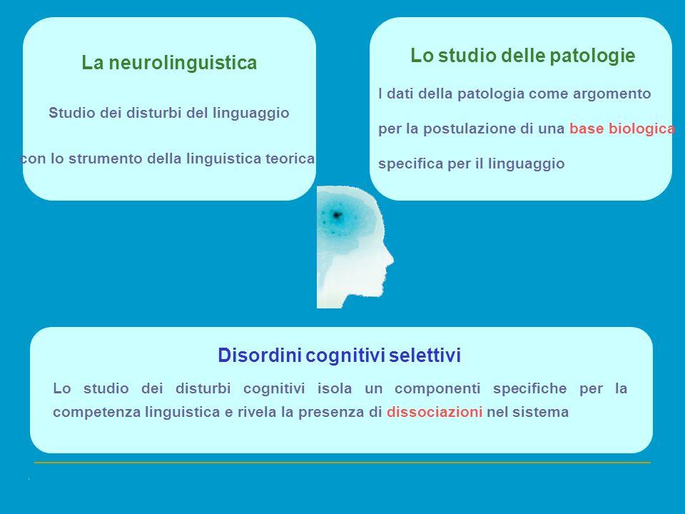 La neurolinguistica Studio dei disturbi del linguaggio con lo strumento della linguistica teorica Lo studio delle patologie I dati della patologia com