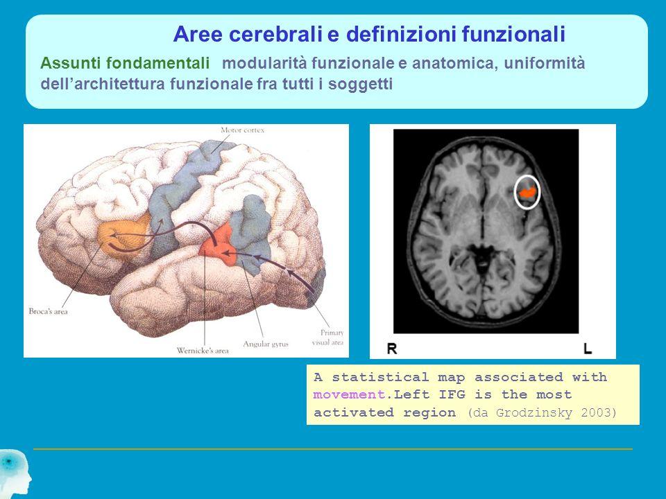 Aree cerebrali e definizioni funzionali Assunti fondamentali modularità funzionale e anatomica, uniformità dellarchitettura funzionale fra tutti i sog