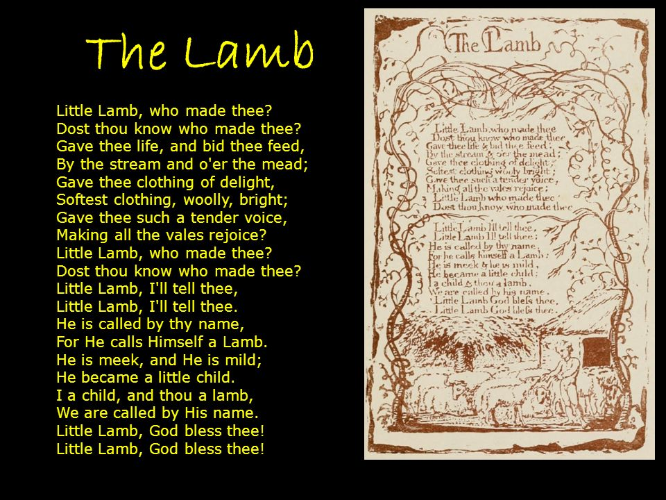 The Lamb Little Lamb, who made thee.Dost thou know who made thee.