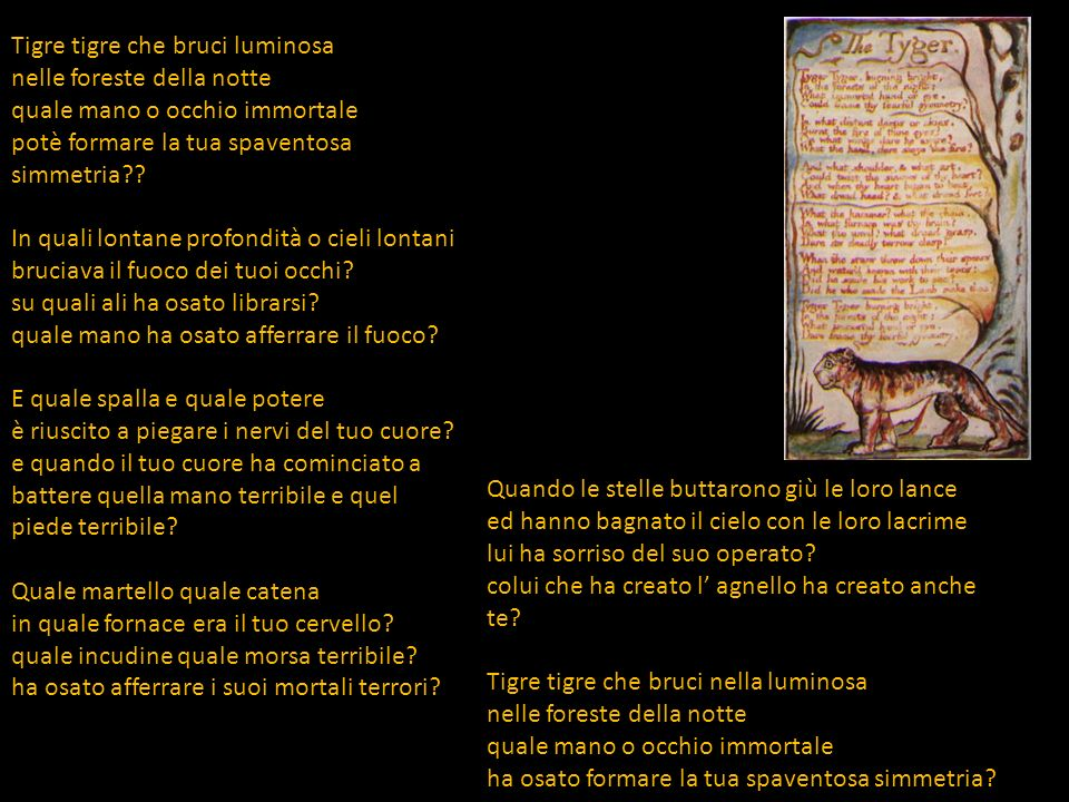 Interpretation Symbols The Tiger: Evil (or Satan) The Lamb: Goodness (or God) Distant Deeps: Hell Skies: Heaven Themes The Existence of Evil The Tiger presents a question that embodies the central theme: Who created the tiger.
