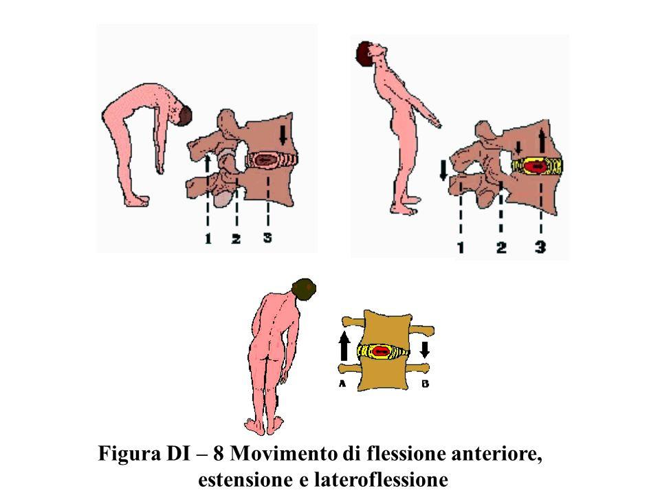 Figura DI – 8 Movimento di flessione anteriore, estensione e lateroflessione