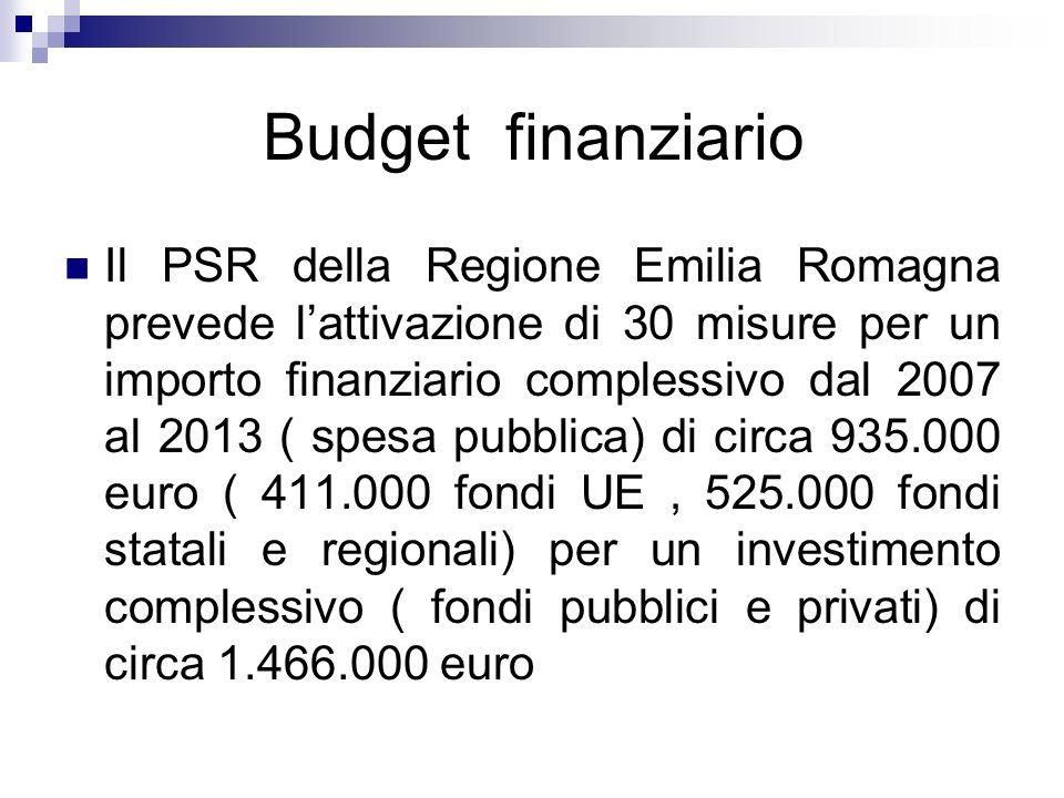 Budget finanziario Il PSR della Regione Emilia Romagna prevede lattivazione di 30 misure per un importo finanziario complessivo dal 2007 al 2013 ( spe