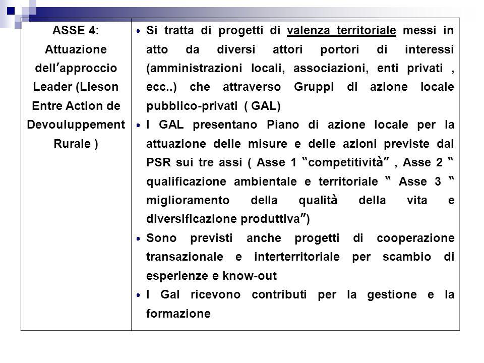 ASSE 4: Attuazione dell approccio Leader (Lieson Entre Action de Devouluppement Rurale ) Si tratta di progetti di valenza territoriale messi in atto d