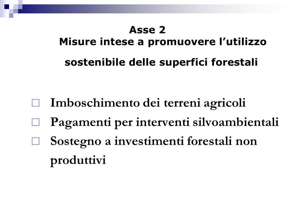 Asse 2 Misure intese a promuovere lutilizzo sostenibile delle superfici forestali Imboschimento dei terreni agricoli Pagamenti per interventi silvoamb