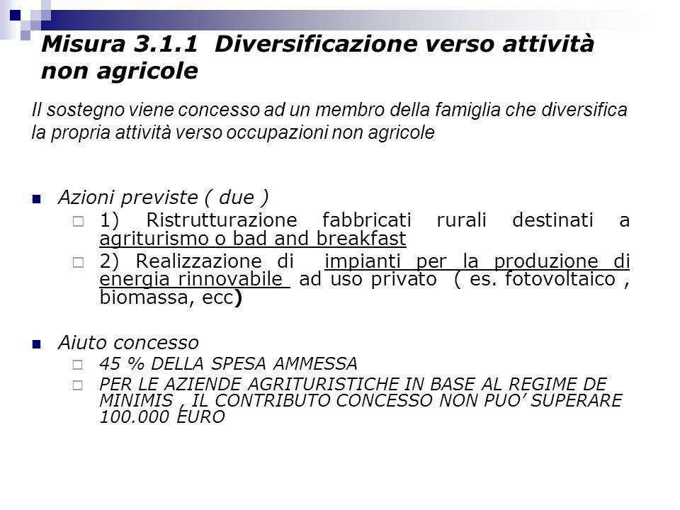 Misura 3.1.1 Diversificazione verso attività non agricole Azioni previste ( due ) 1) Ristrutturazione fabbricati rurali destinati a agriturismo o bad