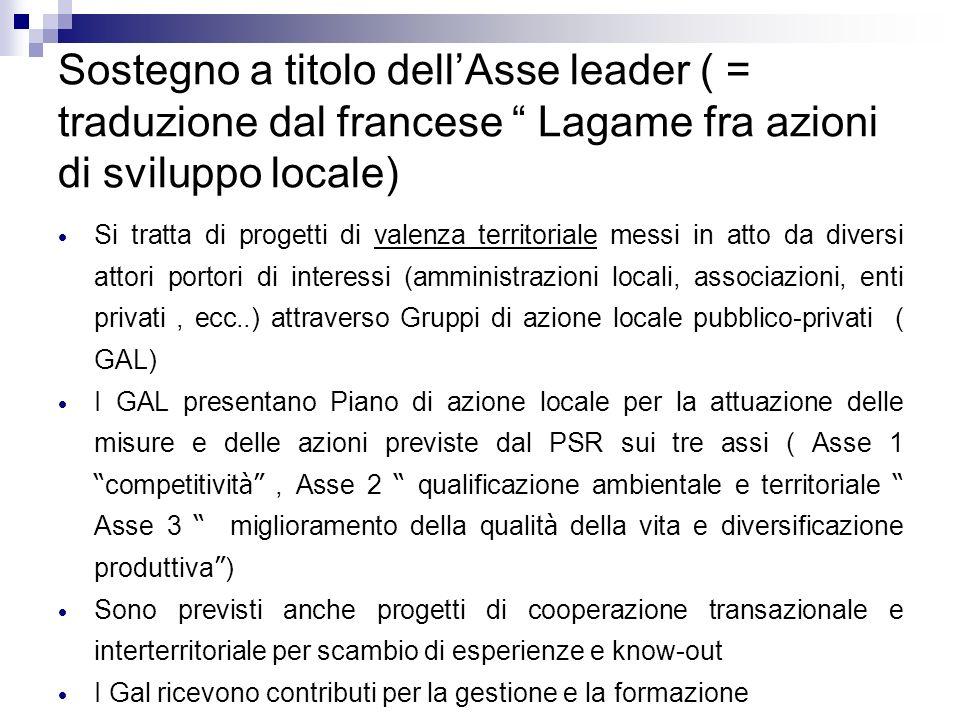 Sostegno a titolo dellAsse leader ( = traduzione dal francese Lagame fra azioni di sviluppo locale) Si tratta di progetti di valenza territoriale mess