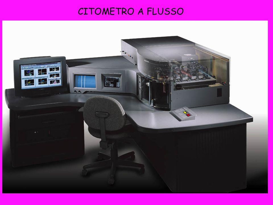 CITOMETRO A FLUSSO