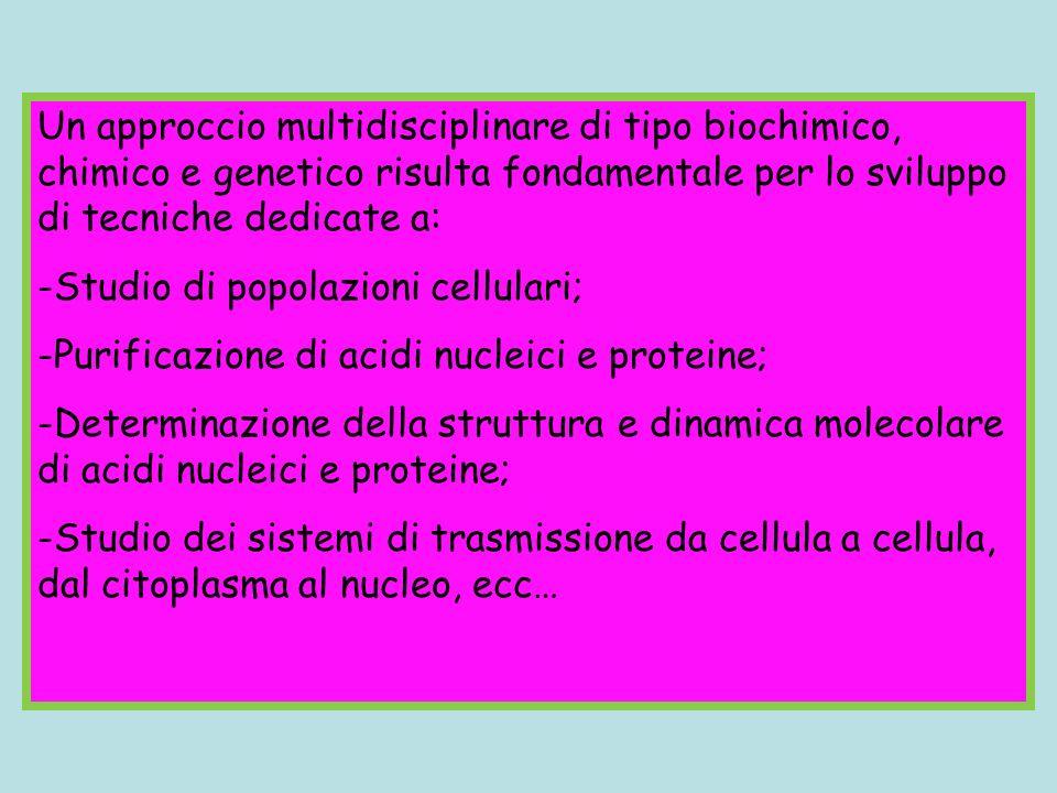 Un approccio multidisciplinare di tipo biochimico, chimico e genetico risulta fondamentale per lo sviluppo di tecniche dedicate a: -Studio di popolazi
