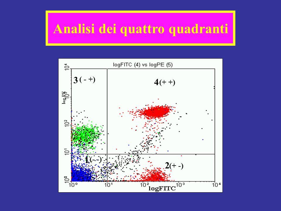 log PE (+ +) ( - +) (+ -) (- -) 3 4 1 2 Analisi dei quattro quadranti