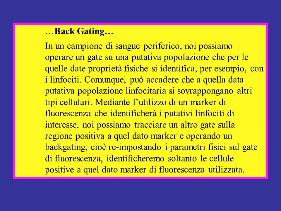 …Back Gating… In un campione di sangue periferico, noi possiamo operare un gate su una putativa popolazione che per le quelle date proprietà fisiche s