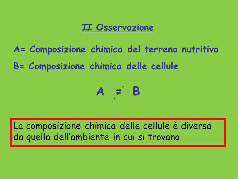 II Osservazione A= Composizione chimica del terreno nutritivo B= Composizione chimica delle cellule A = B La composizione chimica delle cellule è dive
