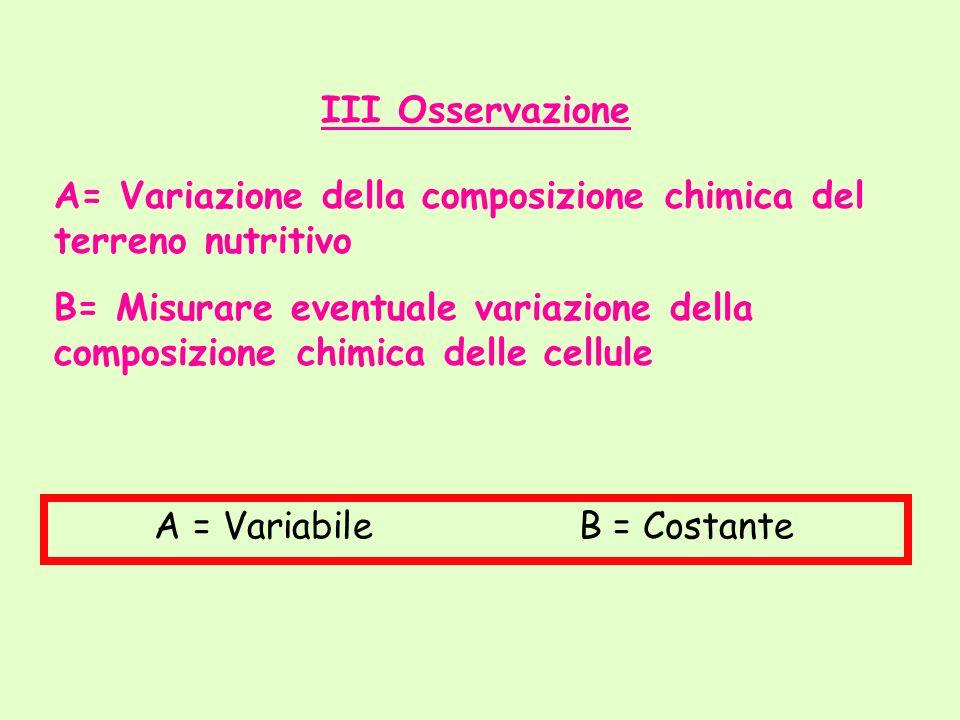 III Osservazione A= Variazione della composizione chimica del terreno nutritivo B= Misurare eventuale variazione della composizione chimica delle cell