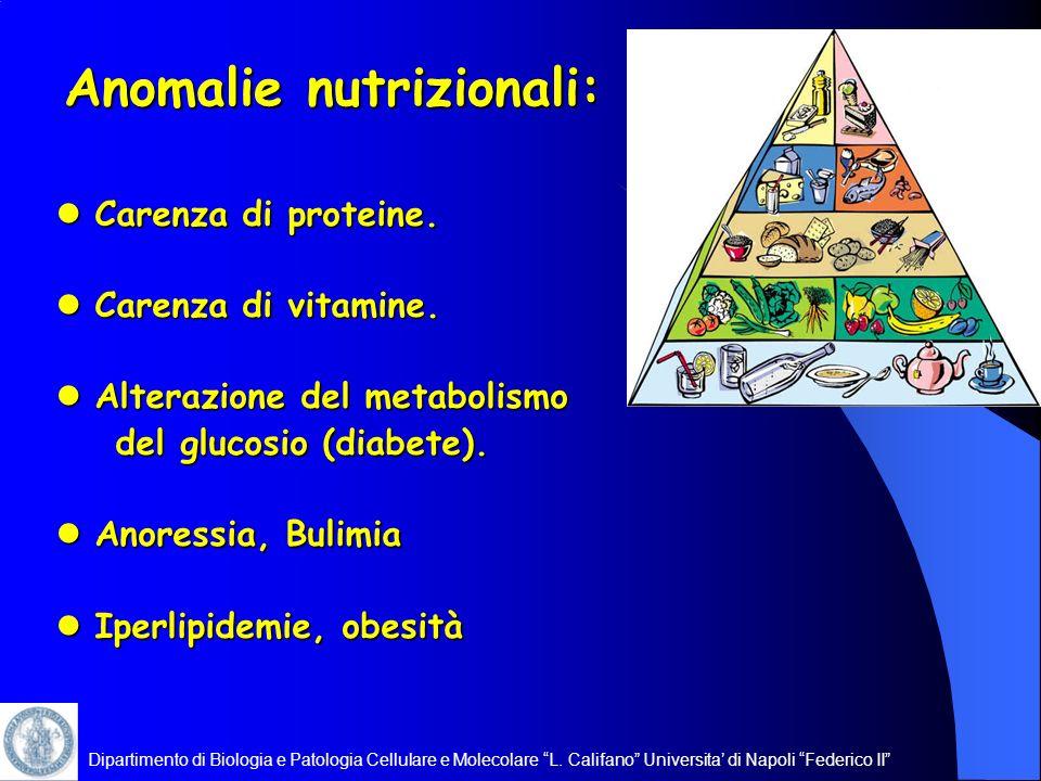 Dipartimento di Biologia e Patologia Cellulare e Molecolare L. Califano Universita di Napoli Federico II Anomalie nutrizionali: Carenza di proteine. C