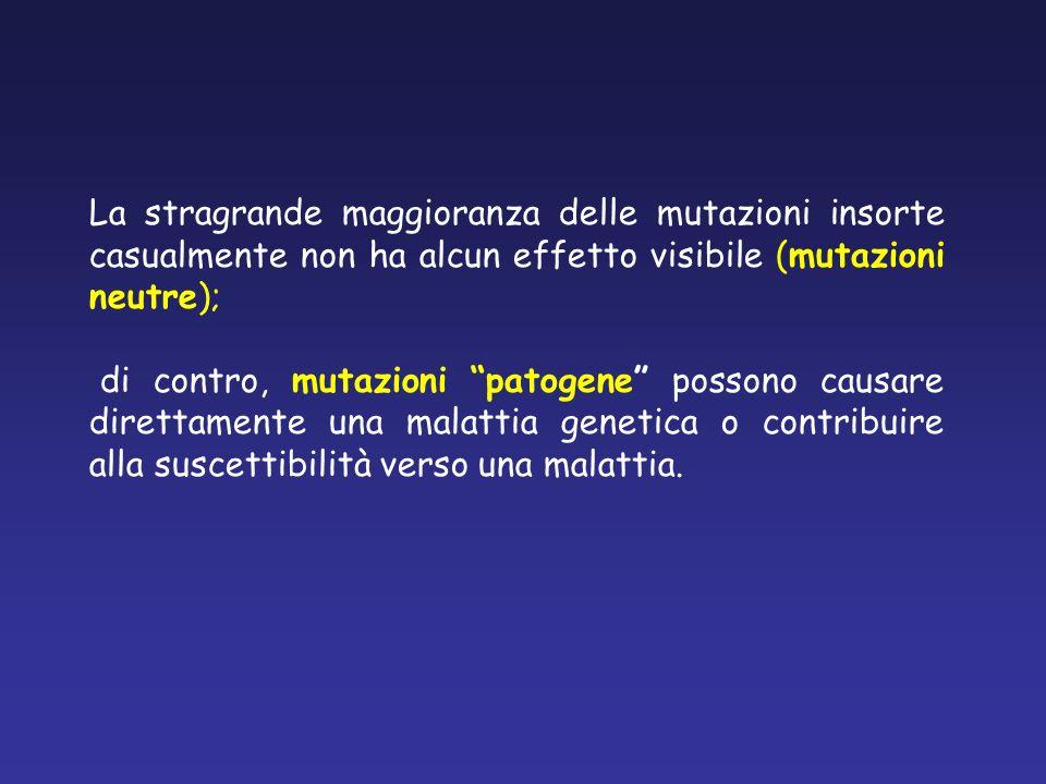 La stragrande maggioranza delle mutazioni insorte casualmente non ha alcun effetto visibile (mutazioni neutre); di contro, mutazioni patogene possono