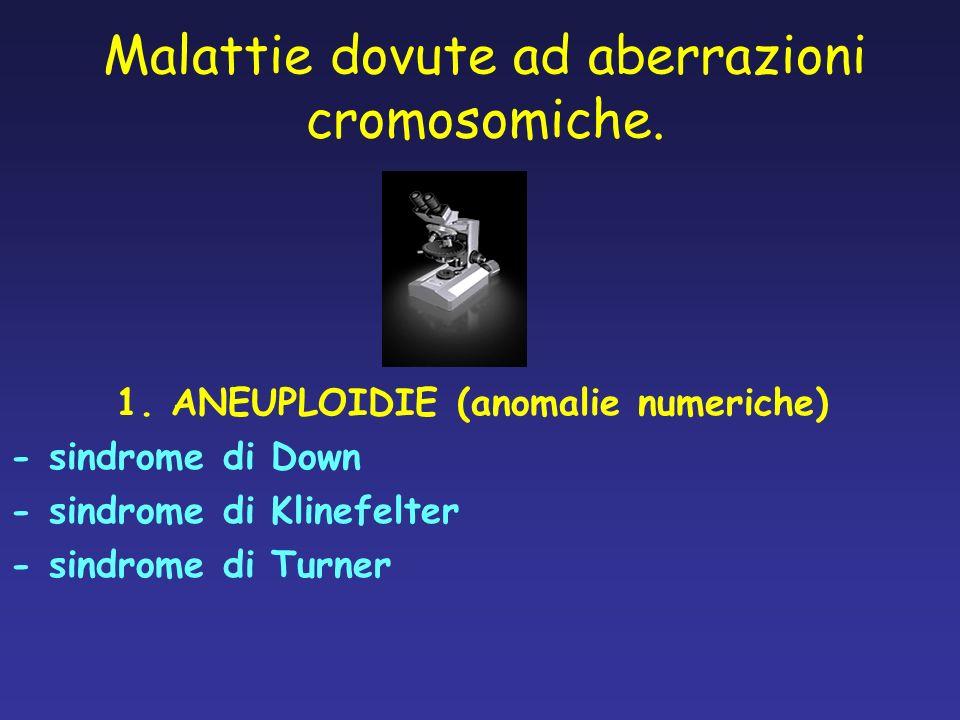 Malattie dovute ad aberrazioni cromosomiche. 1. ANEUPLOIDIE (anomalie numeriche) - sindrome di Down - sindrome di Klinefelter - sindrome di Turner