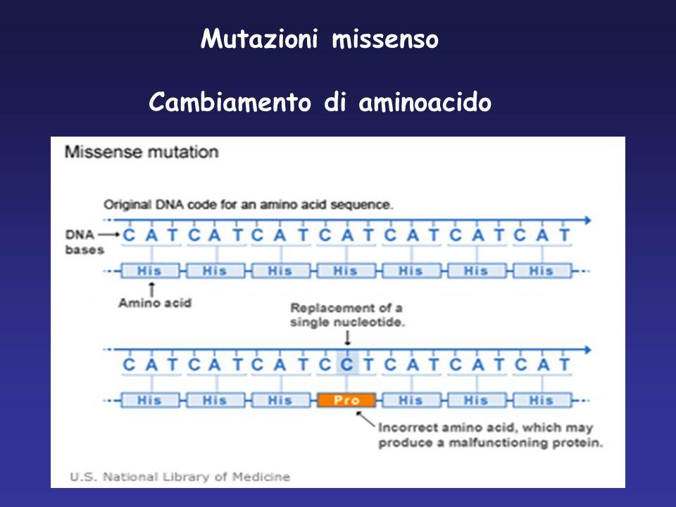 Mutazioni missenso Cambiamento di aminoacido