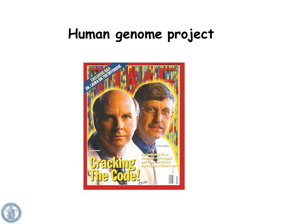 Si conosce la sequenza del DNA della cellula?